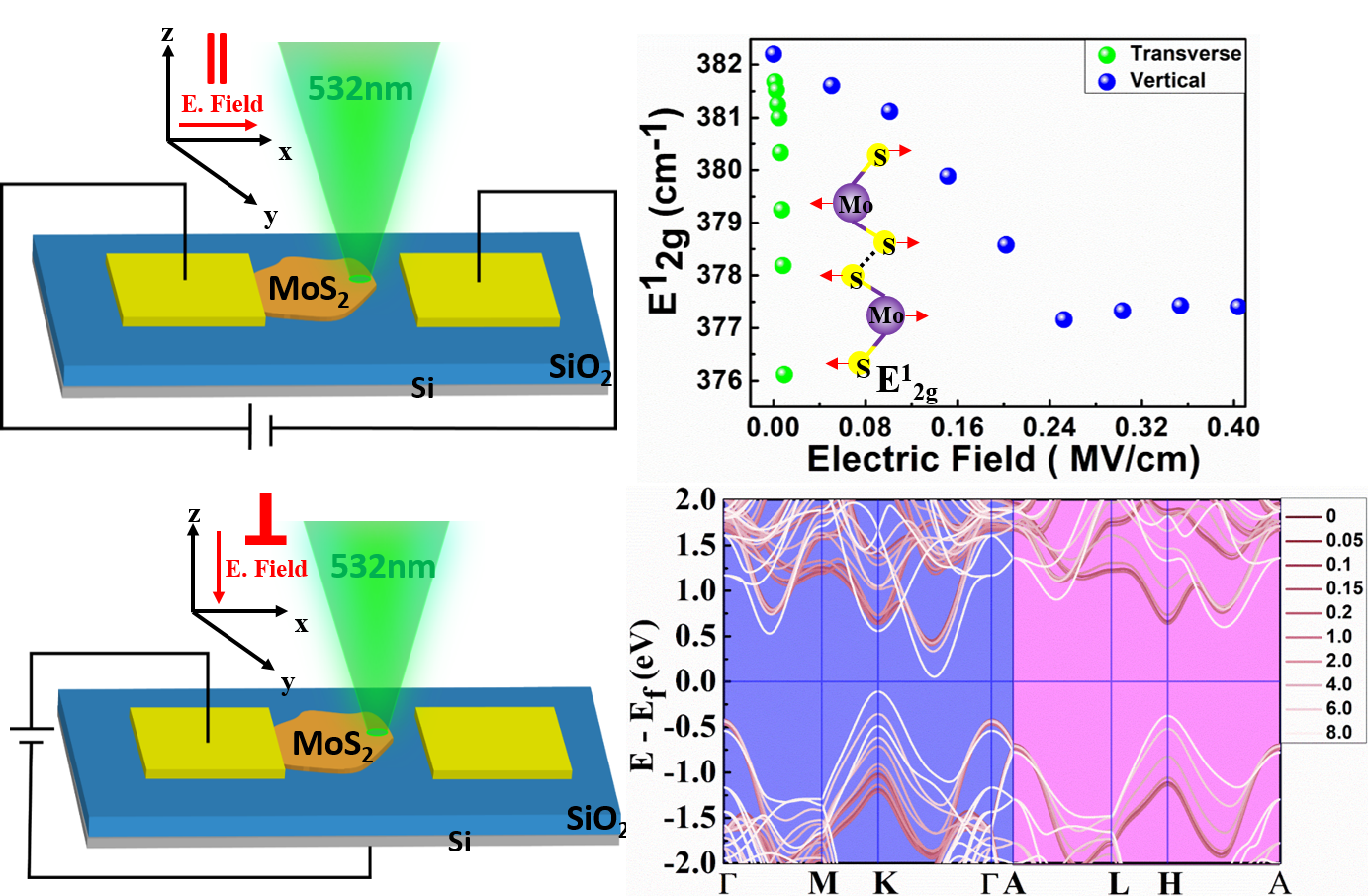 Effect of Electric field on MoS2